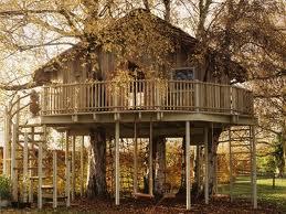 treehouse photos