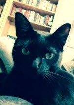 Sammy2