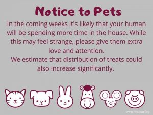 notice to pets