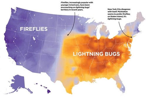 firefly lightning bug map